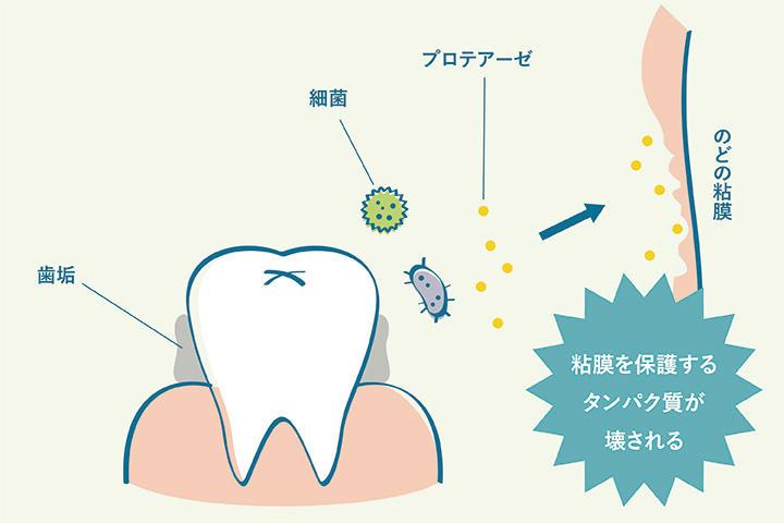 column13_dentalclinic_01.jpg